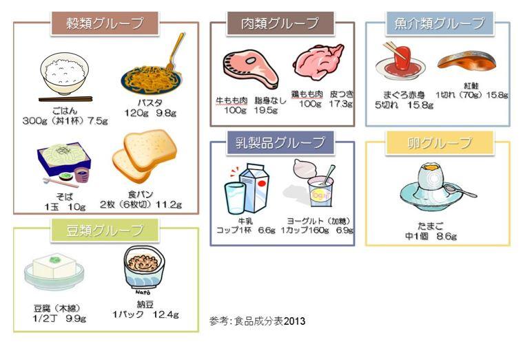 【タンパク質の必要量】タンパク質はどれくらい摂ればいい ?
